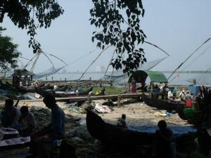 Kochi's infamous chinese fishing nets